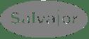 Salvajor logo